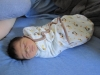 The Little Prince's First Week