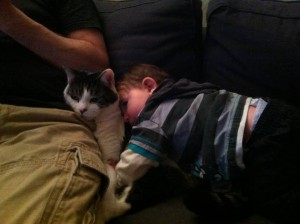 DJ loves the boy-cat!