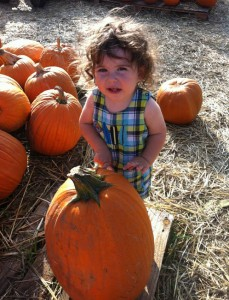 Picking a pumpkin